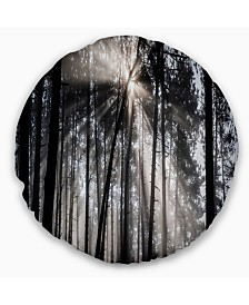 "Designart 'Sunbeams Through Black White Forest' Forest Throw Pillow - 16"" Round"