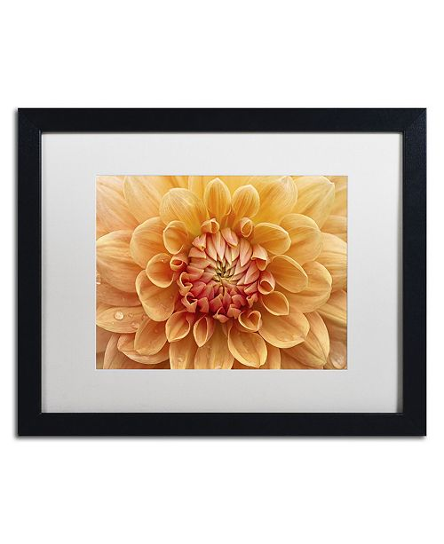 "Trademark Global Cora Niele 'Orange Dahlia' Matted Framed Art - 16"" x 20"" x 0.5"""