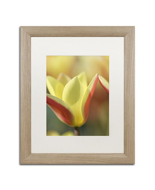 "Trademark Global Cora Niele 'Tulip Tinka' Matted Framed Art - 20"" x 16"" x 0.5"""
