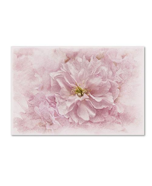 "Trademark Global Cora Niele 'Cherry Blossom' Canvas Art - 47"" x 30"" x 2"""