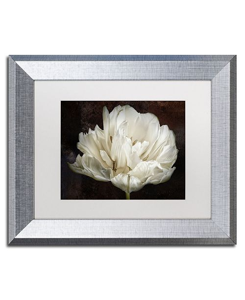 "Trademark Global Cora Niele 'Double White Tulip' Matted Framed Art - 14"" x 11"" x 0.5"""