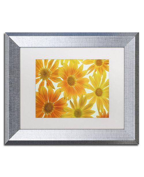 "Trademark Global Cora Niele 'Orange Daisies' Matted Framed Art - 14"" x 11"" x 0.5"""