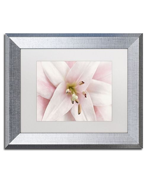 "Trademark Global Cora Niele 'Pink Lily' Matted Framed Art - 14"" x 11"" x 0.5"""