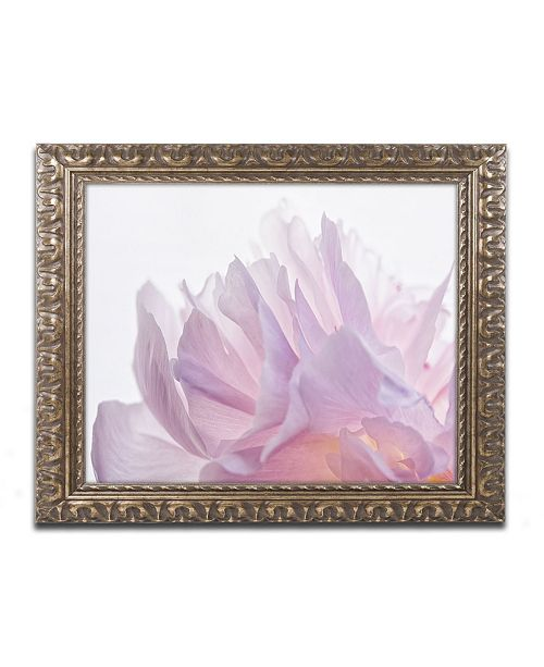 "Trademark Global Cora Niele 'Pink Peony Petals VI' Ornate Framed Art - 14"" x 11"" x 0.5"""