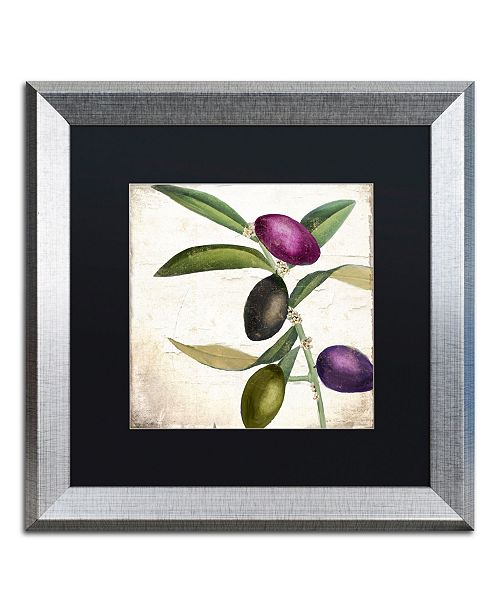 "Trademark Global Color Bakery 'Olive Branch II' Matted Framed Art - 16"" x 0.5"" x 16"""