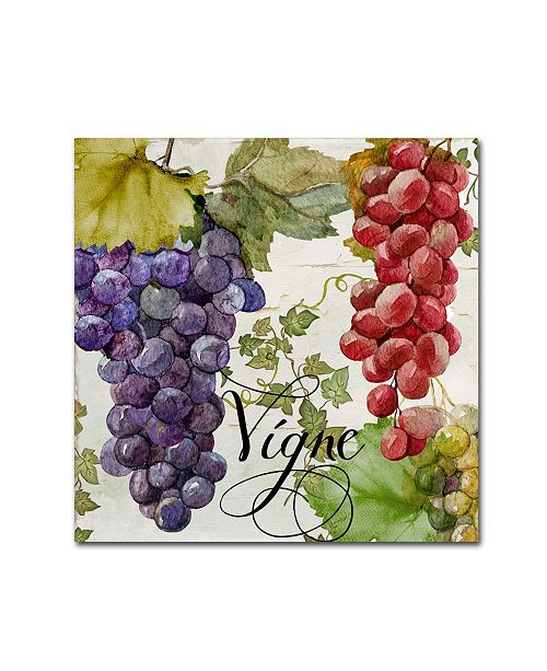 "Trademark Global Color Bakery 'Wines of Paris I' Canvas Art - 14"" x 2"" x 14"""