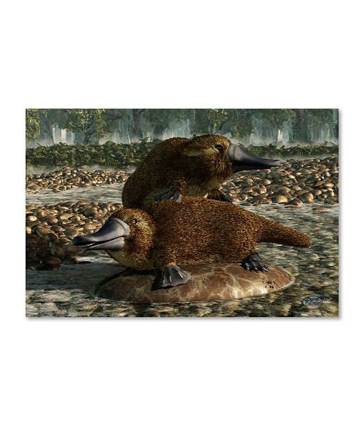 "Trademark Global Daniel Eskridge 'Platypuses' Canvas Art - 19"" x 12"" x 2"""