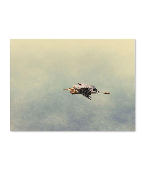 "Trademark Global Jai Johnson 'Blue Heron In Flight 2' Canvas Art - 32"" x 24"" x 2"""