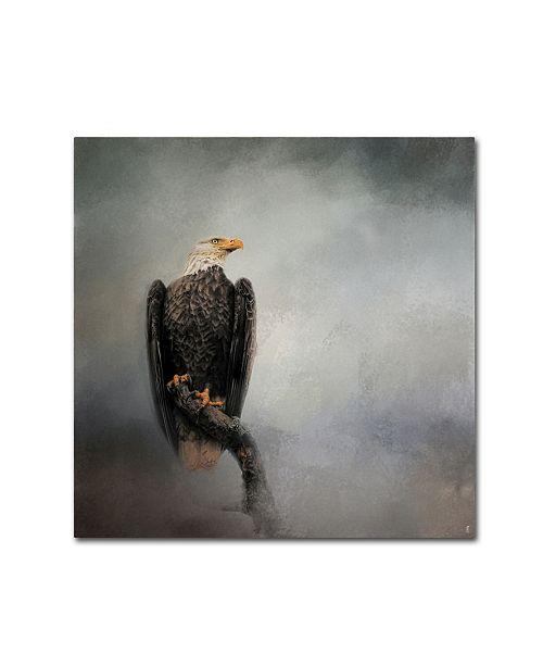 "Trademark Global Jai Johnson 'High Perch Bald Eagle' Canvas Art - 24"" x 24"" x 2"""