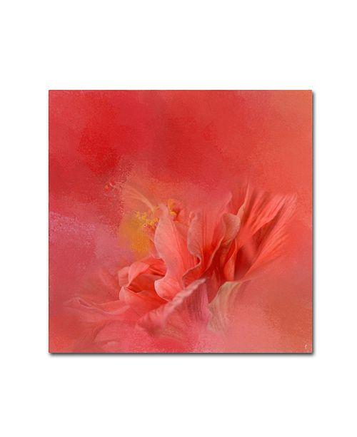 "Trademark Global Jai Johnson 'Salmon Hibiscus 3' Canvas Art - 24"" x 24"" x 2"""