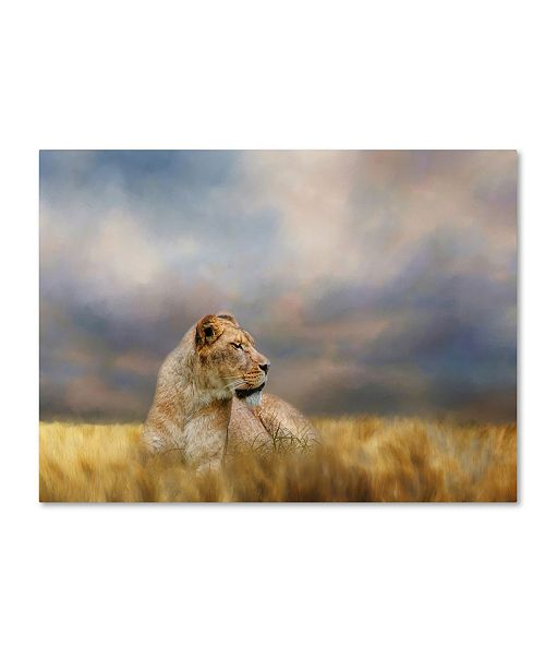 "Trademark Global Jai Johnson 'Lioness After The Storm' Canvas Art - 47"" x 35"" x 2"""