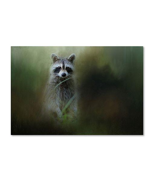 "Trademark Global Jai Johnson 'Little Bandit' Canvas Art - 47"" x 30"" x 2"""