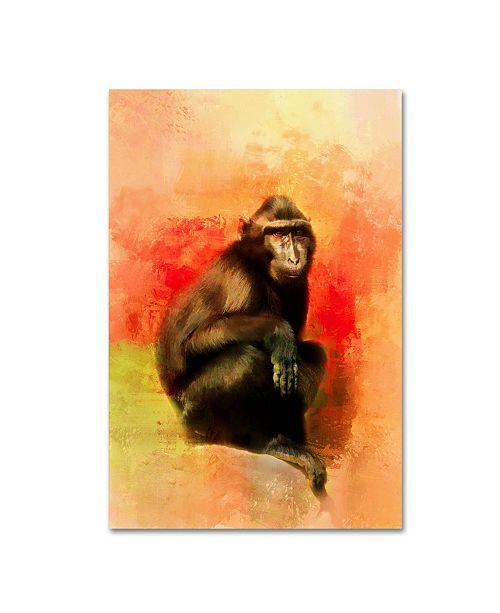 "Trademark Global Jai Johnson 'Colorful Expressions Black Monkey' Canvas Art - 32"" x 22"" x 2"""