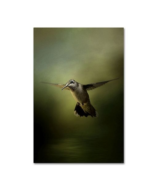 "Trademark Global Jai Johnson 'Hummingbird Over Water' Canvas Art - 24"" x 16"" x 2"""