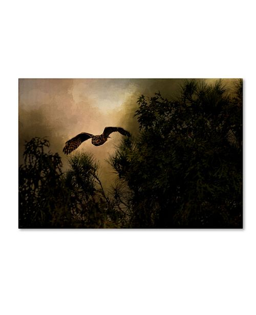 "Trademark Global Jai Johnson 'Night of The Owl 1' Canvas Art - 32"" x 22"" x 2"""