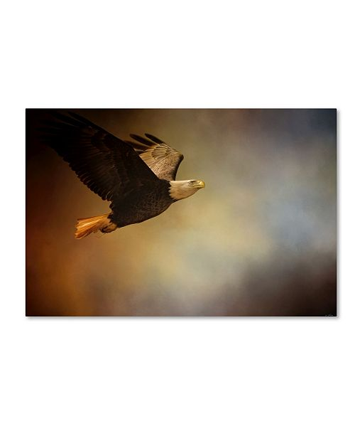 "Trademark Global Jai Johnson 'Magnificence' Canvas Art - 24"" x 16"" x 2"""