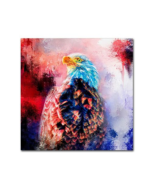 "Trademark Global Jai Johnson 'Jazzy Bald Eagle' Canvas Art - 18"" x 18"" x 2"""