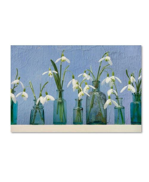"Trademark Global Cora Niele 'Snoflakes In Little Bottles' Canvas Art - 47"" x 30"" x 2"""
