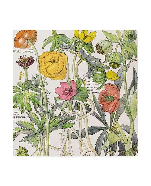 "Trademark Global Color Bakery 'Ambrosia 6' Canvas Art - 35"" x 35"" x 2"""