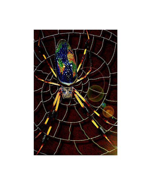 "Trademark Global Dana Brett Munach 'Waiting' Canvas Art - 19"" x 12"" x 2"""