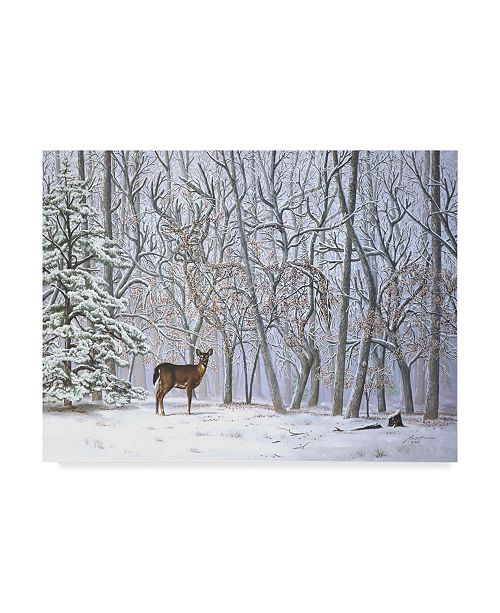 "Trademark Global D. Rusty Rust 'Big Buck' Canvas Art - 24"" x 18"" x 2"""