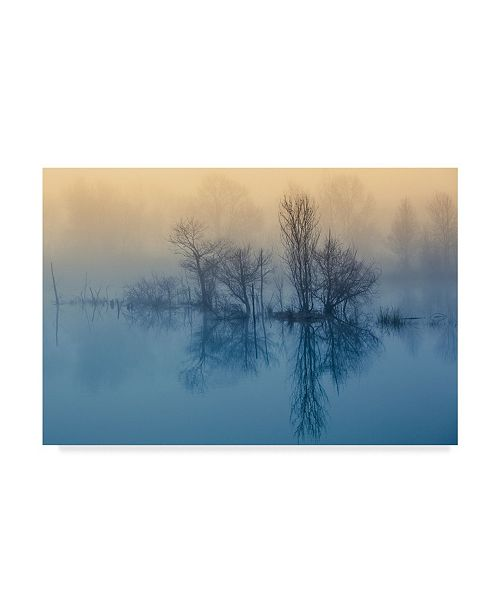 "Trademark Global David Butali 'Morning Reflection Black Trees' Canvas Art - 24"" x 2"" x 16"""