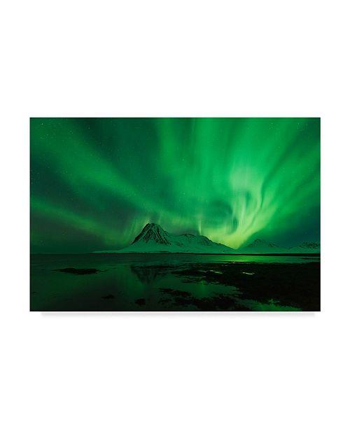 "Trademark Global David Martin Castan 'Bright Lights In Green' Canvas Art - 24"" x 2"" x 16"""
