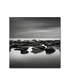 "Dave MacVicar 'High Tide' Canvas Art - 24"" x 24"" x 2"""
