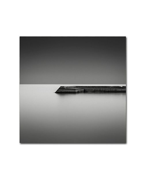 "Trademark Global Dave MacVicar 'Sunnyside' Canvas Art - 14"" x 14"" x 2"""