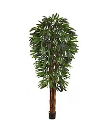 "84"" Raphis Silk Palm Tree"