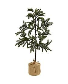 3' Iced Pine Tree w/ Burlap Base