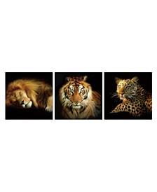 "Decor Wild Safari 3 Piece Wrapped Canvas Wall Art Felines -27"" x 82"""