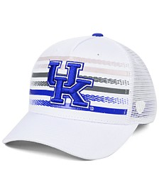 Top of the World Kentucky Wildcats Tranquil Trucker Cap
