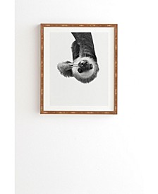 Sloth Framed Wall Art