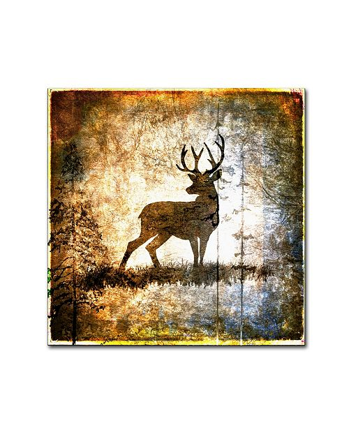 "Trademark Global lightbox Journal 'High Country Deer' Canvas Art - 35"" x 35"" x 2"""