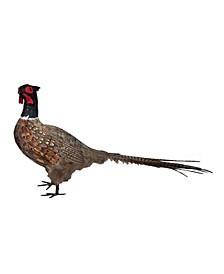 "16.5"" Pheasant Decor"