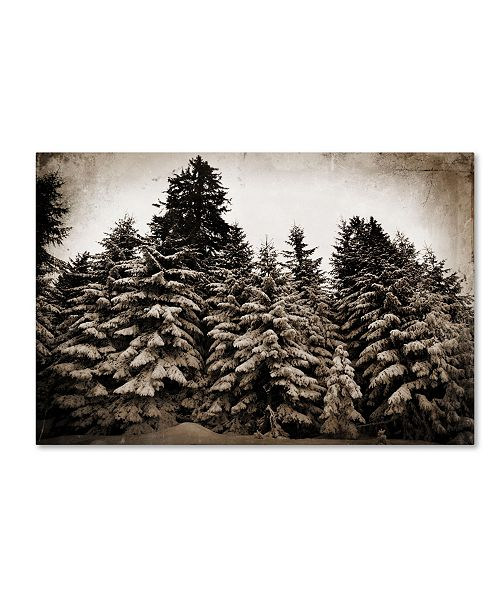 "Trademark Global Tina Lavoie 'Old Growth' Canvas Art - 19"" x 12"" x 2"""