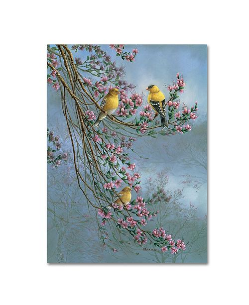 "Trademark Global Wanda Mumm 'Gold Finches' Canvas Art - 24"" x 18"" x 2"""