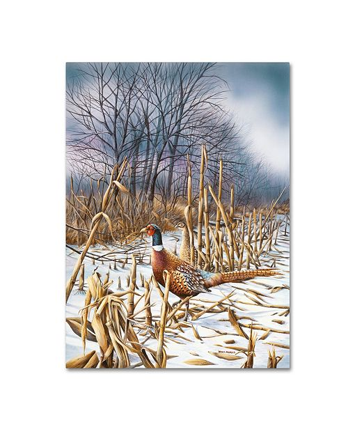 "Trademark Global Wanda Mumm 'Northern Light' Canvas Art - 19"" x 14"" x 2"""