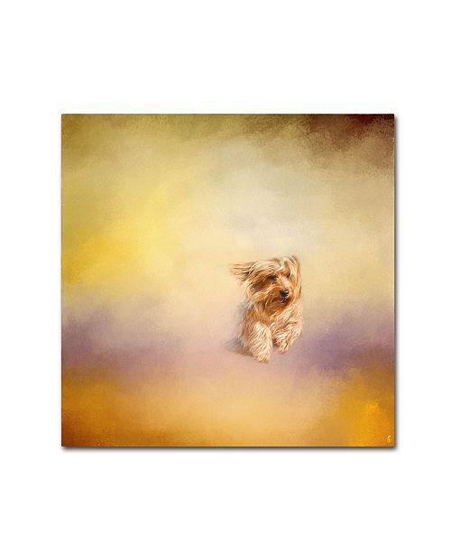 "Trademark Global Jai Johnson 'Yorkie Running Into The Wind' Canvas Art - 24"" x 24"" x 2"""