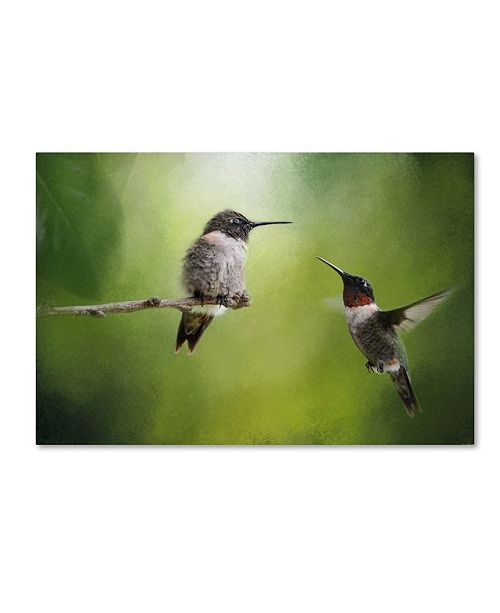 "Trademark Global Jai Johnson 'Wake Up Call Hummingbirds' Canvas Art - 47"" x 30"" x 2"""