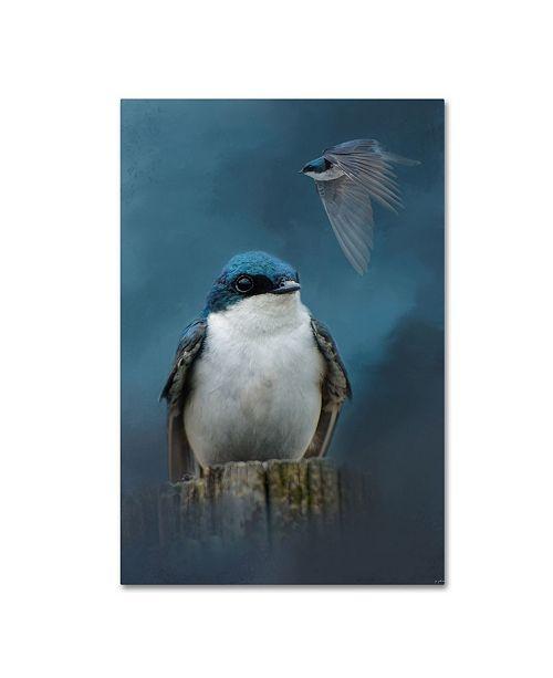 "Trademark Global Jai Johnson 'The Beautiful Tree Swallow' Canvas Art - 19"" x 12"" x 2"""