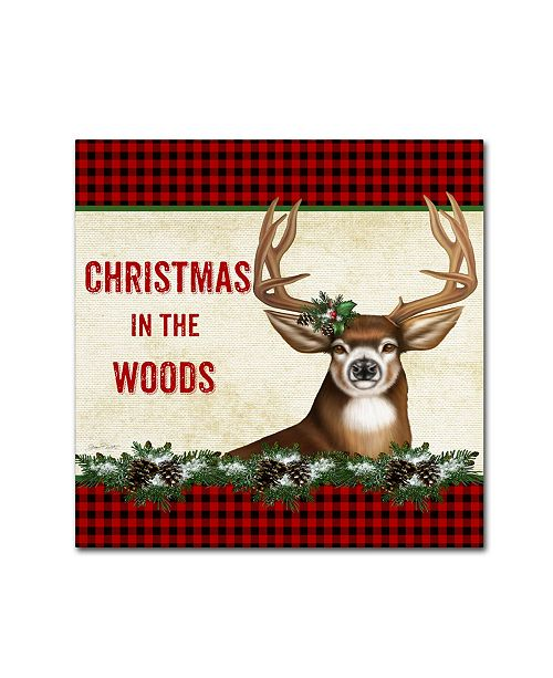"""Trademark Global Jean Plout 'Country Christmas 5' Canvas Art - 18"""" x 18"""" x 2"""""""