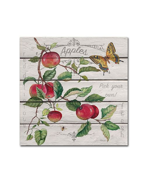 """Trademark Global Jean Plout 'Red Delicious Apples' Canvas Art - 18"""" x 18"""" x 2"""""""