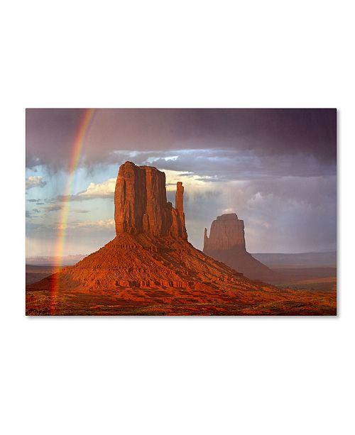 "Trademark Global Mike Jones Photo 'Mittens Rainbow' Canvas Art - 19"" x 12"" x 2"""