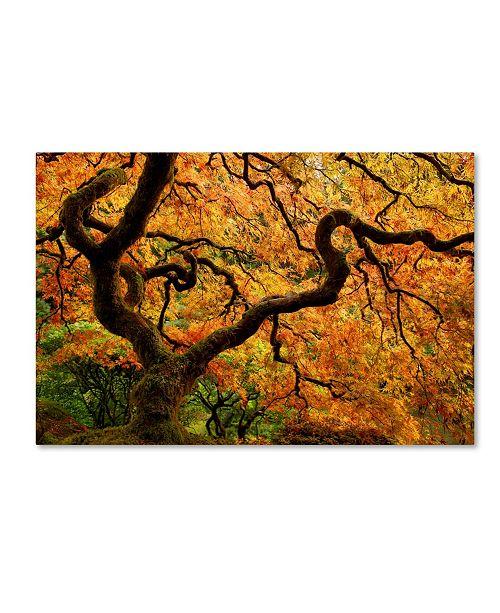 "Trademark Global Mike Jones Photo 'Portland Japanese Garden' Canvas Art - 24"" x 16"" x 2"""