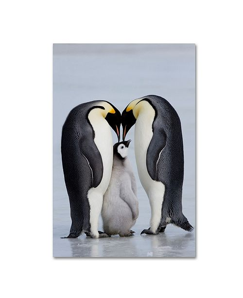 """Trademark Global Robert Harding Picture Library 'Two Penguins' Canvas Art - 47"""" x 30"""" x 2"""""""