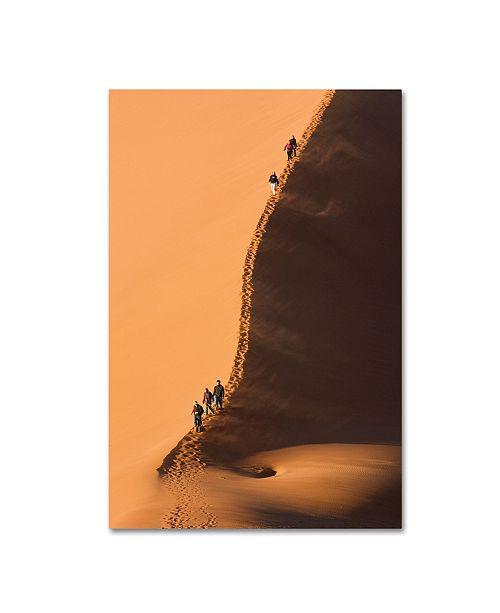 "Trademark Global Robert Harding Picture Library 'Desert 3' Canvas Art - 19"" x 12"" x 2"""