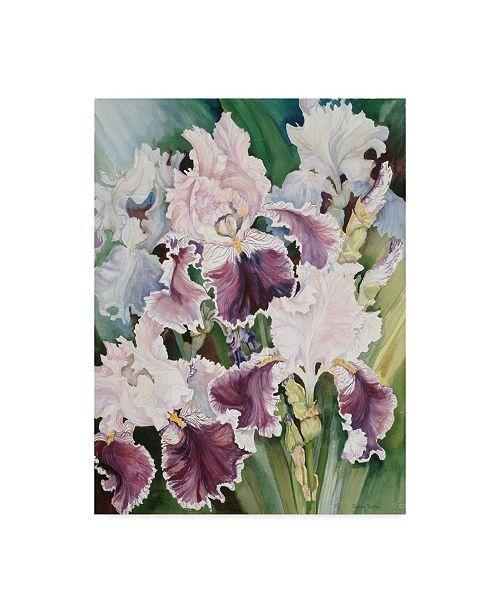 "Trademark Global Joanne Porter 'Ruffled Burgundy Iris' Canvas Art - 24"" x 18"" x 2"""