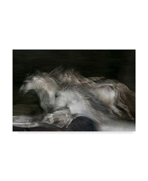 "Trademark Global Milan Malovrh 'White Horses Into The Dark' Canvas Art - 19"" x 2"" x 12"""